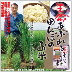 無農薬有機栽培オーガニック
