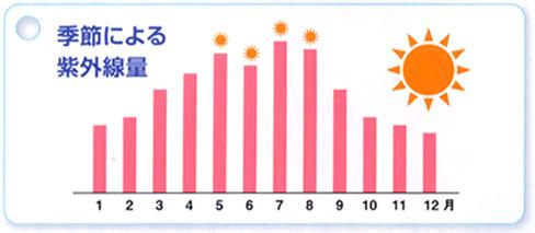 季節による紫外線量の変化